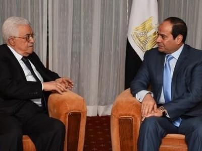 Mesir Janji Dukung Penuh Palestina