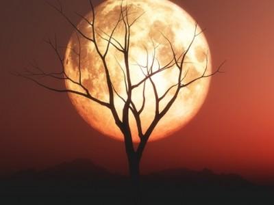 Hikmah Bulan Hanya Bercahaya Sempurna saat Malam Purnama