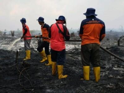 Pemadaman Kebakaran Area Gambut di Sambas Manfaatkan Sekat Kanal dan Sumur Bor BRGM