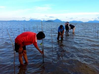 Wujudkan Tema HUT Kemerdekaan RI dengan Percepatan Restorasi Gambut dan Rehabilitasi Mangrove